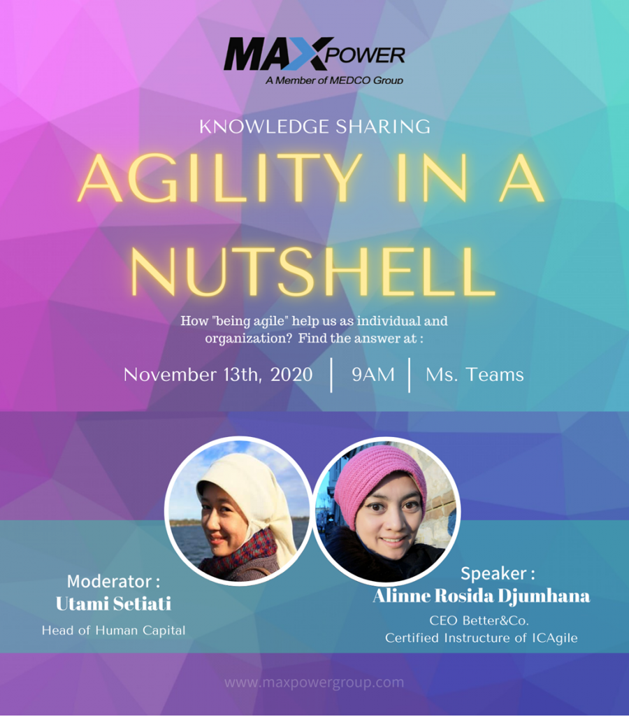 Knowledge Sharing : Agility in a Nutshell